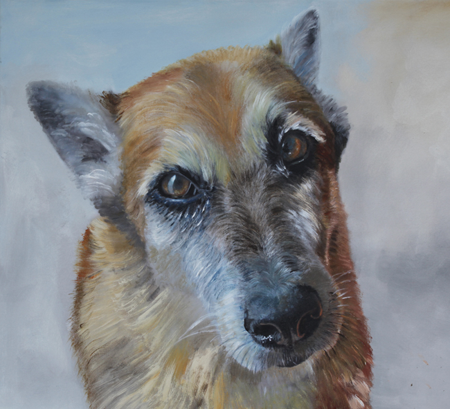 Dog Portrait